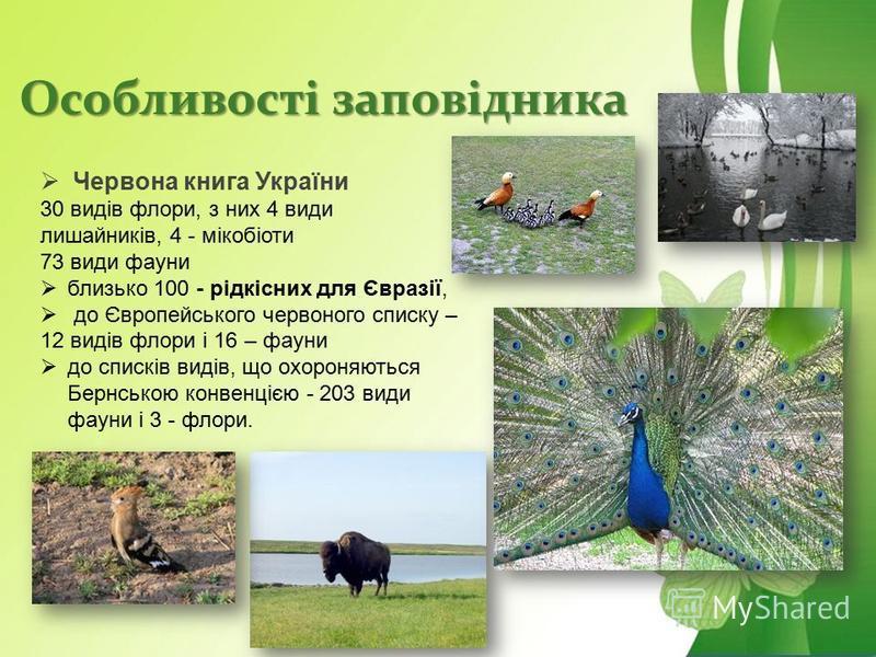 Особливості заповідника Червона книга України 30 видів флори, з них 4 види лишайників, 4 - мікобіоти 73 види фауни близько 100 - рідкісних для Євразії, до Європейського червоного списку – 12 видів флори і 16 – фауни до списків видів, що охороняються
