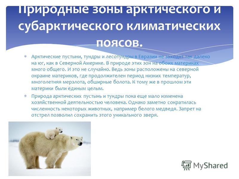 Арктические пустыни, тундры и лесотундры в Евразии не заходят так далеко на юг, как в Северной Америке. В природе этих зон на обоих материках много общего. И это не случайно. Ведь зоны расположены на северной окраине материков, где продолжителен пери