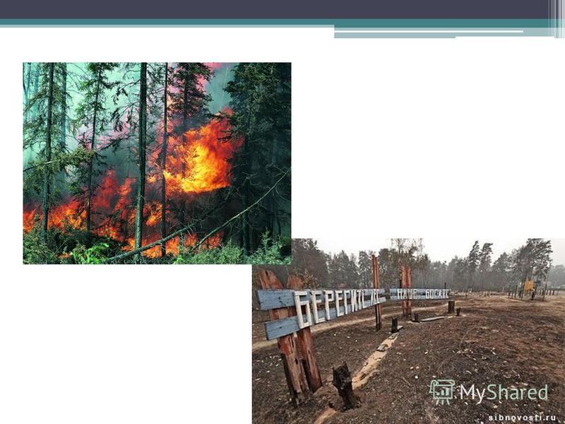 Извержение вулканов часто приводит к пожарам
