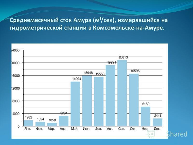 Среднемесячный сток Амура (м³/сек), измерявшийся на гидрометрической станции в Комсомольске-на-Амуре.