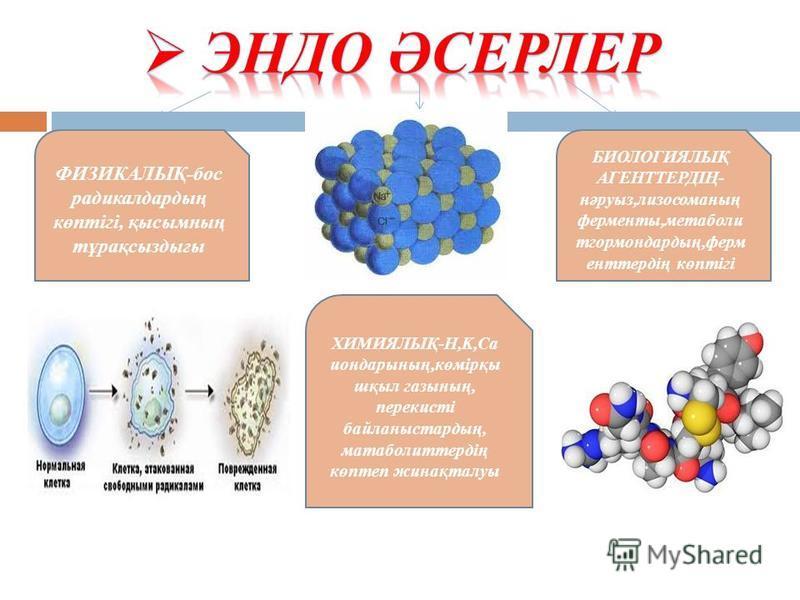 ФИЗИКАЛЫҚ-бос радикалдардың көптігі, қысымның тұрақсыздығы БИОЛОГИЯЛЫҚ АГЕНТТЕРДІҢ- нәруыз,лизосоманың ферменты,метаболи тгормондардың,ферм енттердің көптігі ХИМИЯЛЫҚ-H,K,Ca иондарының,көмірқы шқыл газының, перекисті байланыстардың, матаболиттердің к