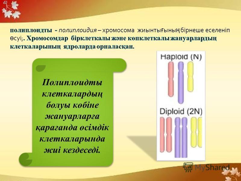 Полиплоидты клеткалардың болуы көбіне жануарларға қарағанда өсімдік клеткаларында жиі кездеседі.
