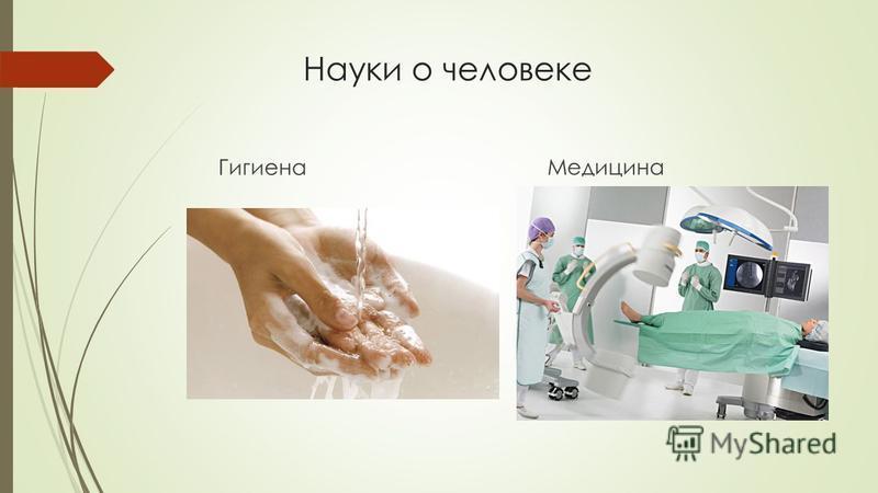 Науки о человеке Гигиена Медицина