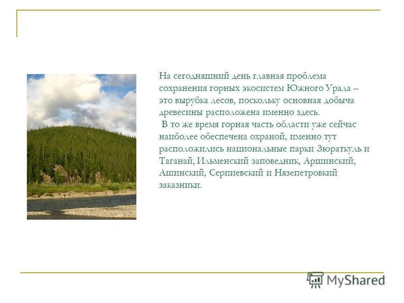 На сегодняшний день главная проблема сохранения горных экосистем Южного Урала – это вырубка лесов, поскольку основная добыча древесины расположена именно здесь. В то же время горная часть области уже сейчас наиболее обеспечена охраной, именно тут рас