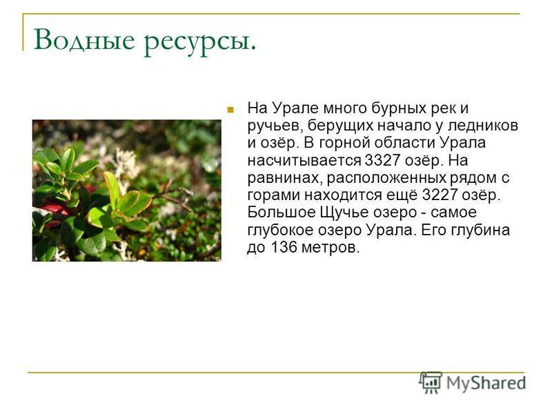 Водные ресурсы. На Урале много бурных рек и ручьев, берущих начало у ледников и озёр. В горной области Урала насчитывается 3327 озёр. На равнинах, расположенных рядом с горами находится ещё 3227 озёр. Большое Щучье озеро - самое глубокое озеро Урала.