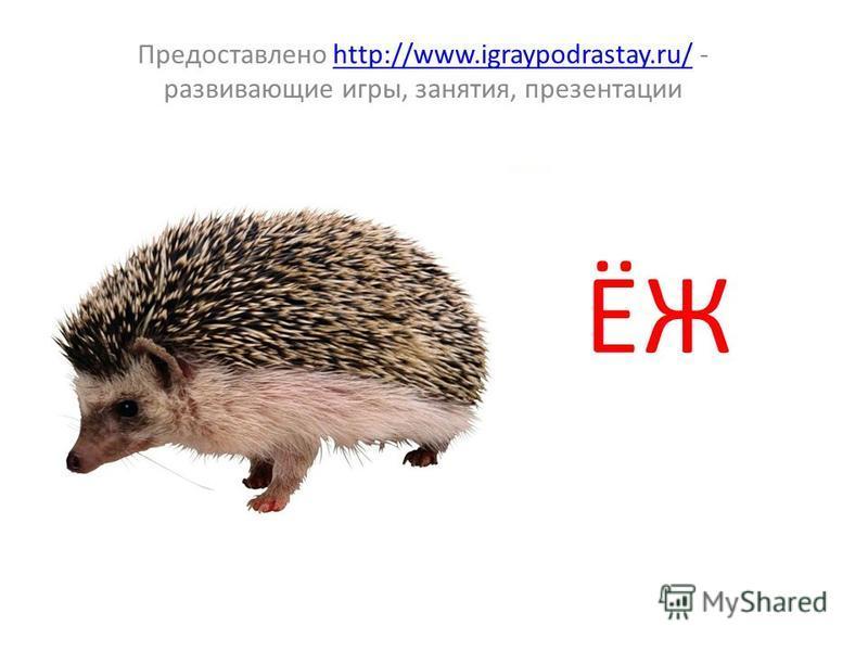 ЁЖ Предоставлено http://www.igraypodrastay.ru/ - развивающие игры, занятия, презентацииhttp://www.igraypodrastay.ru/
