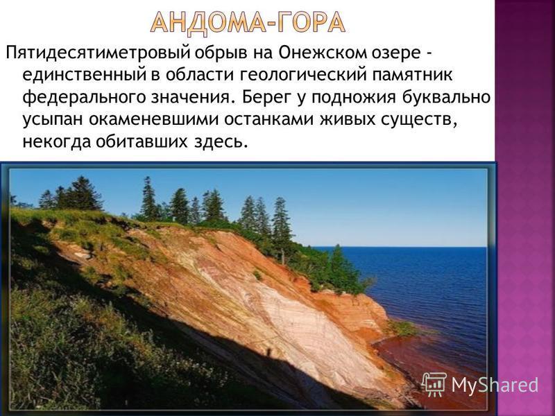 Пятидесятиметровый обрыв на Онежском озере - единственный в области геологический памятник федерального значения. Берег у подножия буквально усыпан окаменевшими останками живых существ, некогда обитавших здесь.