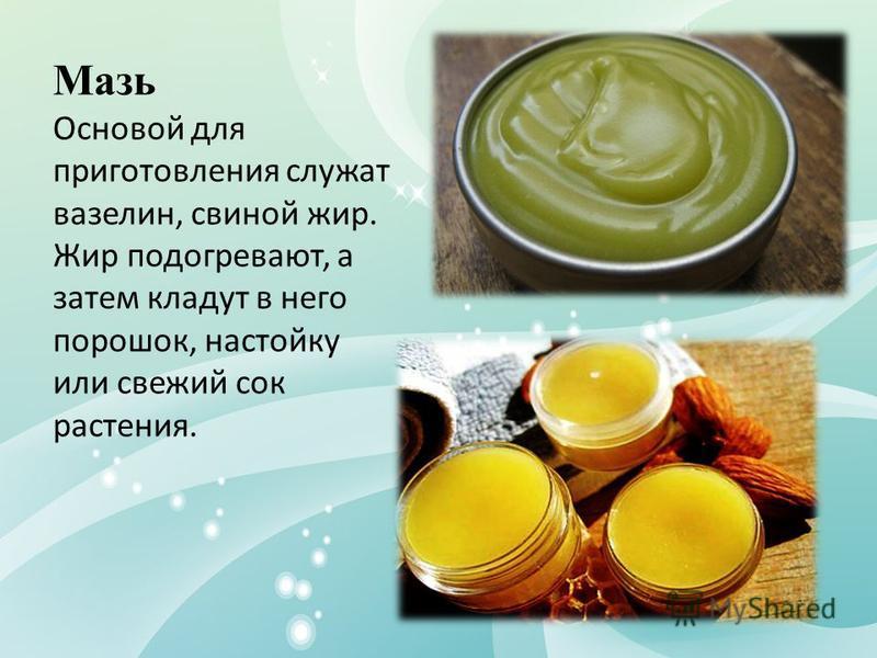 Мазь Основой для приготовления служат вазелин, свиной жир. Жир подогревают, а затем кладут в него порошок, настойку или свежий сок растения.
