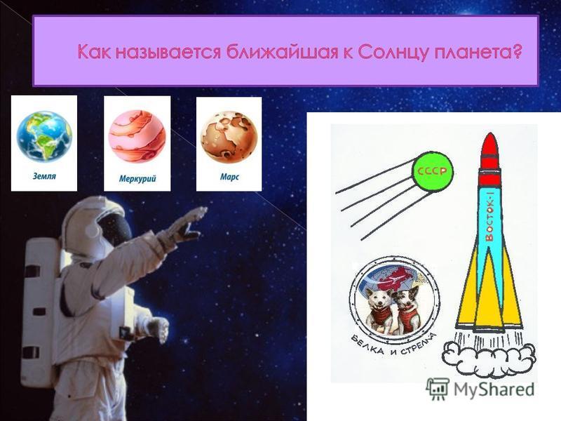 Цыган и Дезик Пчёлка и Мушка Белка и Стрелка