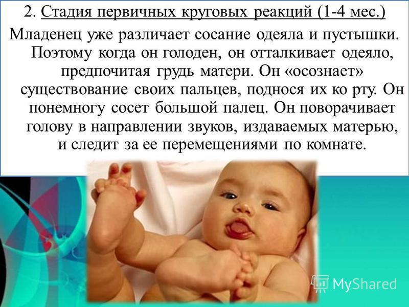 2. Стадия первичных круговых реакций (1-4 мес.) Младенец уже различает сосание одеяла и пустышки. Поэтому когда он голоден, он отталкивает одеяло, предпочитая грудь матери. Он «осознает» существование своих пальцев, поднося их ко рту. Он понемногу со