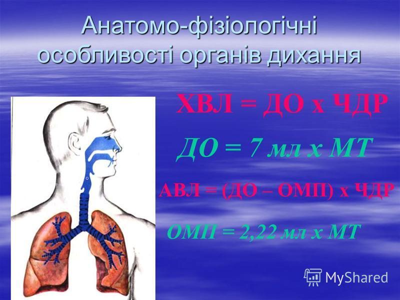 Анатомо-фізіологічні особливості органів дихання ХВЛ = ДО х ЧДР ДО = 7 мл х МТ АВЛ = (ДО – ОМП) х ЧДР ОМП = 2,22 мл х МТ