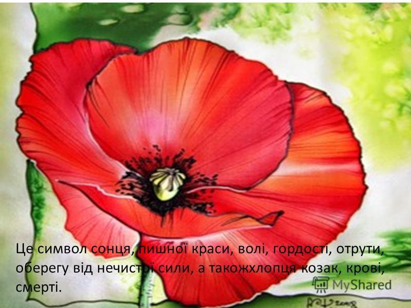 Це символ сонця, пишної краси, волі, гордості, отрути, оберегу від нечистої сили, а такожхлопця козак, крові, смерті.