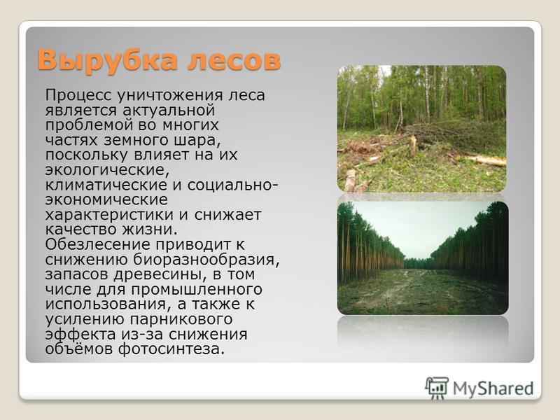 Вырубка лесов Процесс уничтожения леса является актуальной проблемой во многих частях земного шара, поскольку влияет на их экологические, климатические и социально- экономические характеристики и снижает качество жизни. Обезлесение приводит к снижени