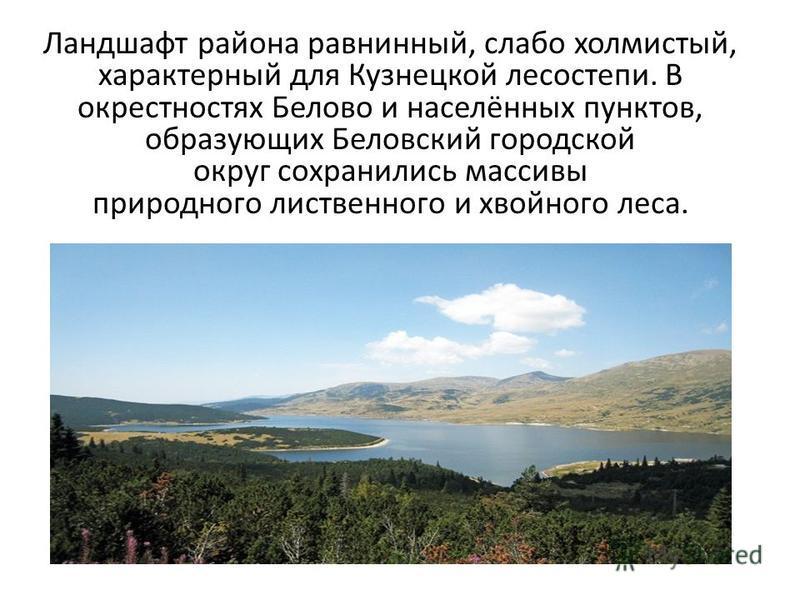 Ландшафт района равнинный, слабо холмистый, характерный для Кузнецкой лесостепи. В окрестностях Белово и населённых пунктов, образующих Беловский городской округ сохранились массивы природного лиственного и хвойного леса.