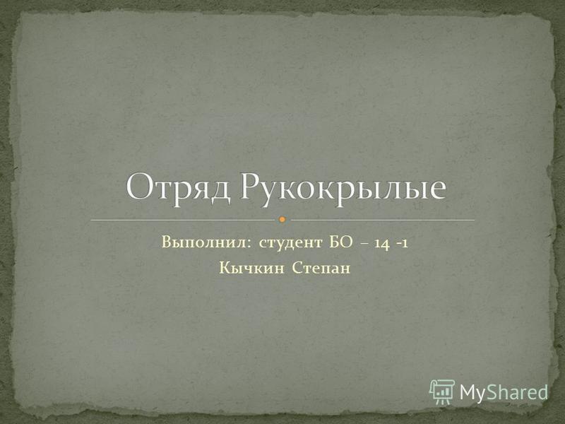 Выполнил: студент БО – 14 -1 Кычкин Степан