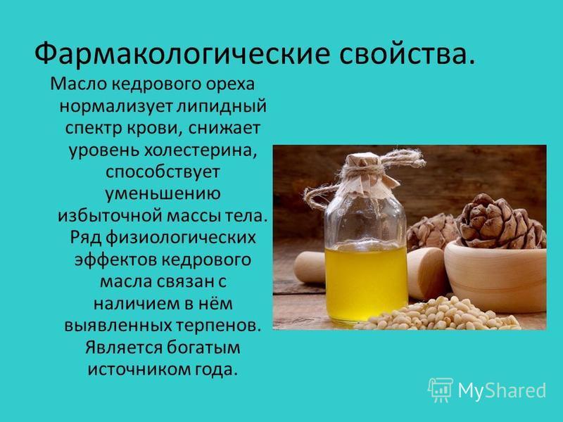 Фармакологические свойства. Масло кедрового ореха нормализует липидный спектр крови, снижает уровень холестерина, способствует уменьшению избыточной массы тела. Ряд физиологических эффектов кедрового масла связан с наличием в нём выявленных терпенов.