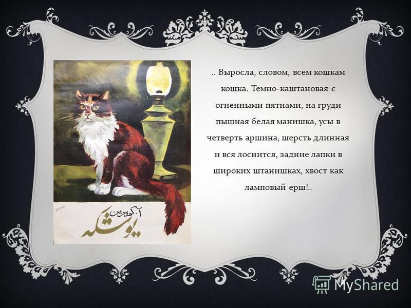 .. Выросла, словом, всем кошкам кошка. Темно - каштановая с огненными пятнами, на груди пышная белая манишка, усы в четверть аршина, шерсть длинная и вся лоснится, задние лапки в широких штанишках, хвост как ламповый ерш !..