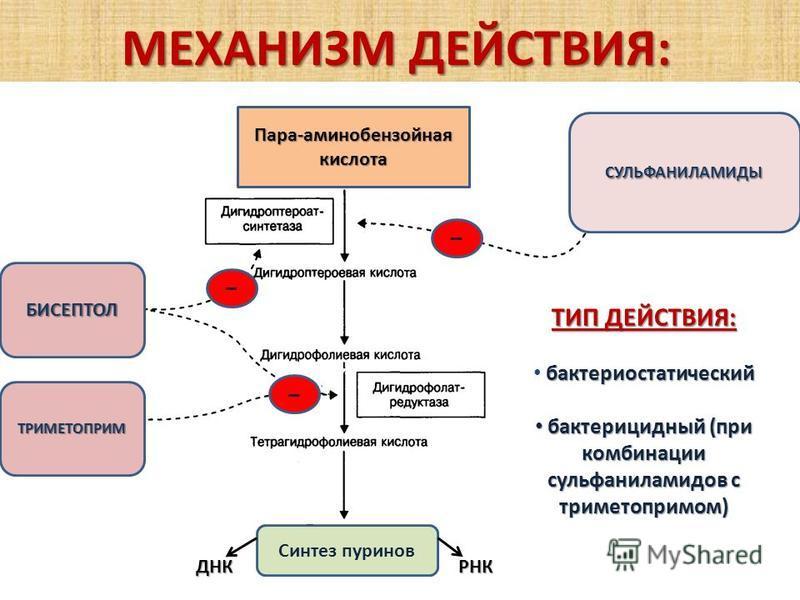 МЕХАНИЗМ ДЕЙСТВИЯ: УГНЕТЕНИЕ ТИП ДЕЙСТВИЯ: бактериостатический бактерицидный (при комбинации сульфаниламидов с триметопримом) бактерицидный (при комбинации сульфаниламидов с триметопримом) СУЛЬФАНИЛАМИДЫ БИСЕПТОЛ ТРИМЕТОПРИМ Пара-аминобензойная кисло