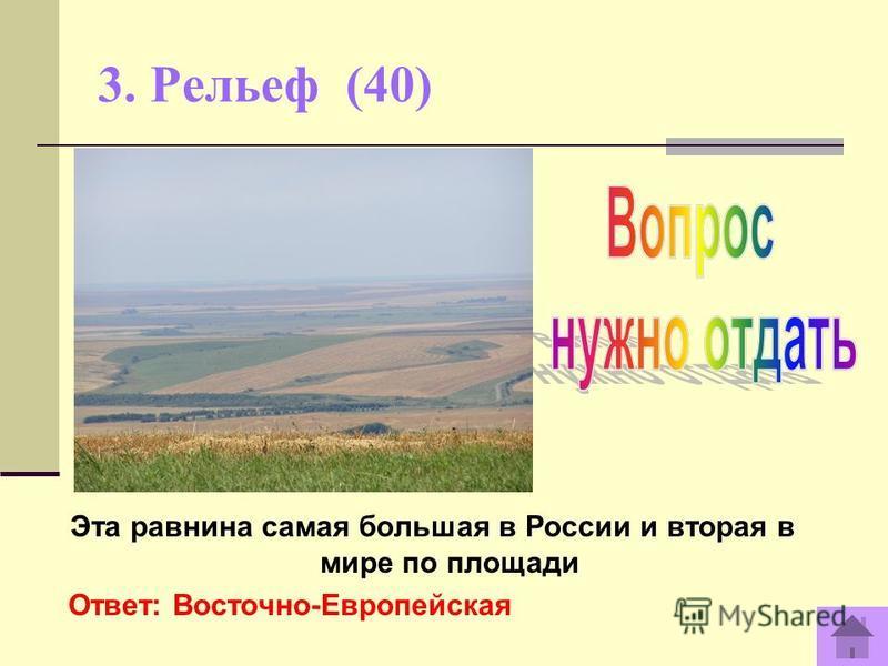 3. Рельеф (40) Эта равнина самая большая в России и вторая в мире по площади Ответ: Восточно-Европейская