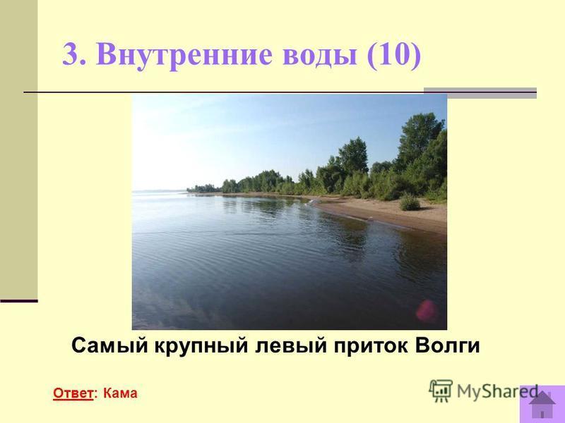 3. Внутренние воды (10) Самый крупный левый приток Волги Ответ: Кама
