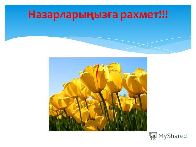 Назарлары ң ыз ғ а рахмет!!!