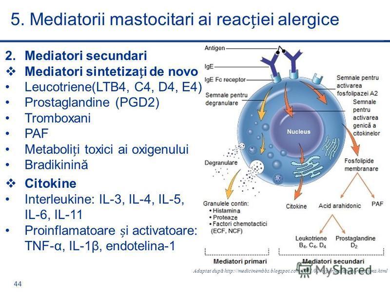 44 2.Mediatori secundari Mediatori sintetizai de novo Leucotriene(LTB4, C4, D4, E4) Prostaglandine (PGD2) Tromboxani PAF Metabolii toxici ai oxigenului Bradikinină Citokine Interleukine: IL-3, IL-4, IL-5, IL-6, IL-11 Proinflamatoare i activatoare: TN