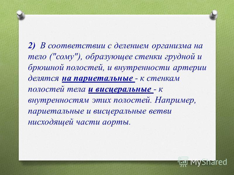 2) В соответствии с делением организма на тело (