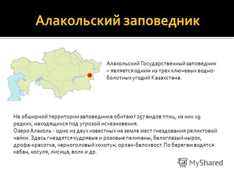 Алакольский Государственный заповедник – является одним из трех ключевых водно- болотных угодий Казахстана. На обширной территории заповедника обитают 257 видов птиц, из них 19 редких, находящихся под угрозой исчезновения. Озеро Алаколь - одно из дву