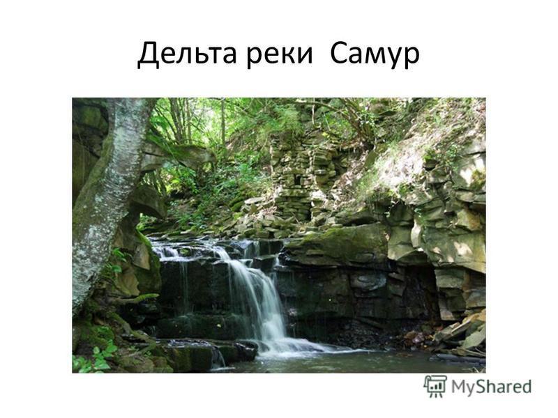 Дельта реки Самур