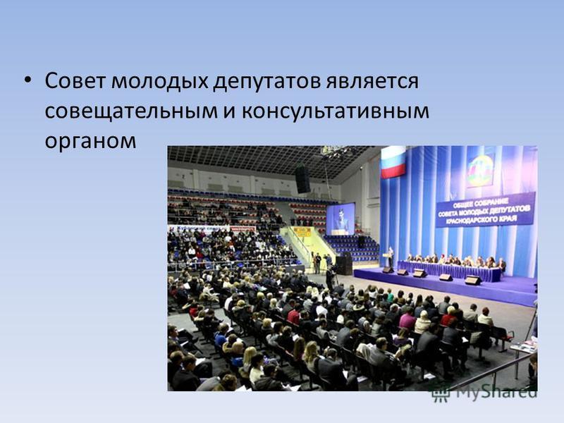 Совет молодых депутатов является совещательным и консультативным органом