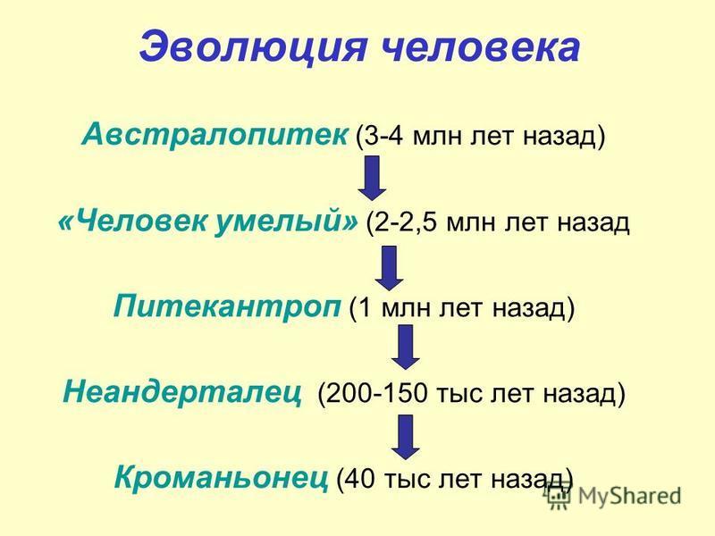 Эволюция человека Австралопитек (3-4 млн лет назад) «Человек умелый» (2-2,5 млн лет назад Питекантроп (1 млн лет назад) Неандерталец (200-150 тыс лет назад) Кроманьонец (40 тыс лет назад)