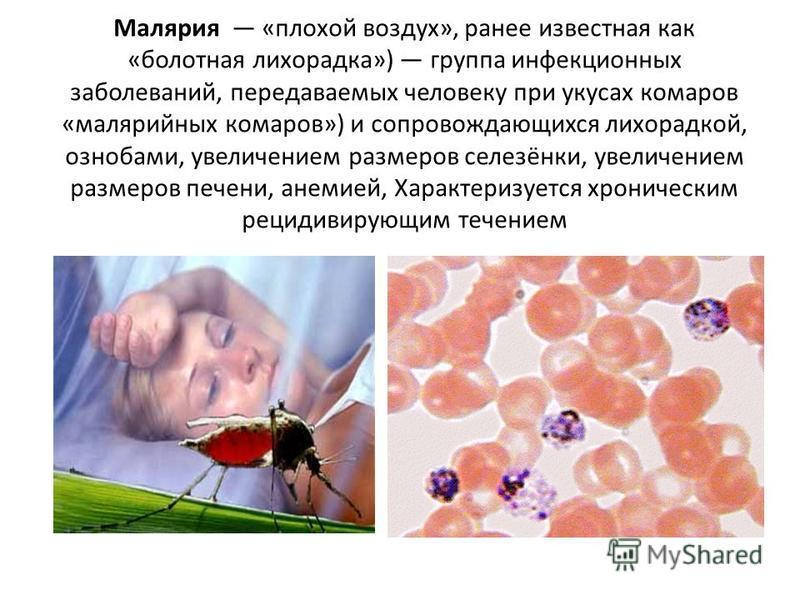 Малярия «плохой воздух», ранее известная как «болотная лихорадка») группа инфекционных заболеваний, передаваемых человеку при укусах комаров «малярийных комаров») и сопровождающихся лихорадкой, ознобами, увеличением размеров селезёнки, увеличением ра