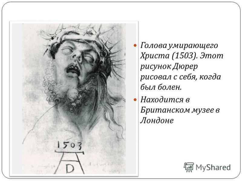 Голова умирающего Христа (1503). Этот рисунок Дюрер рисовал с себя, когда был болен. Находится в Британском музее в Лондоне