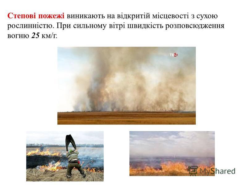Степові пожежі виникають на відкритій місцевості з сухою рослинністю. При сильному вітрі швидкість розповсюдження вогню 25 км/г.