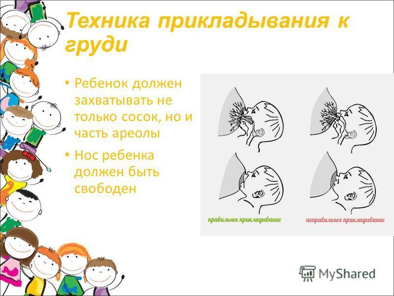 Техника прикладывания к груди Ребенок должен захватывать не только сосок, но и часть ареолы Нос ребенка должен быть свободен