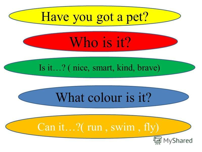 Have you got a pet? Who is it? Is it…? ( nice, smart, kind, brave) What colour is it? Can it…?( run, swim, fly)