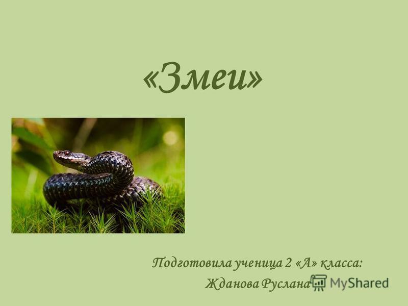 «Змеи» Подготовила ученица 2 «А» класса: Жданова Руслана