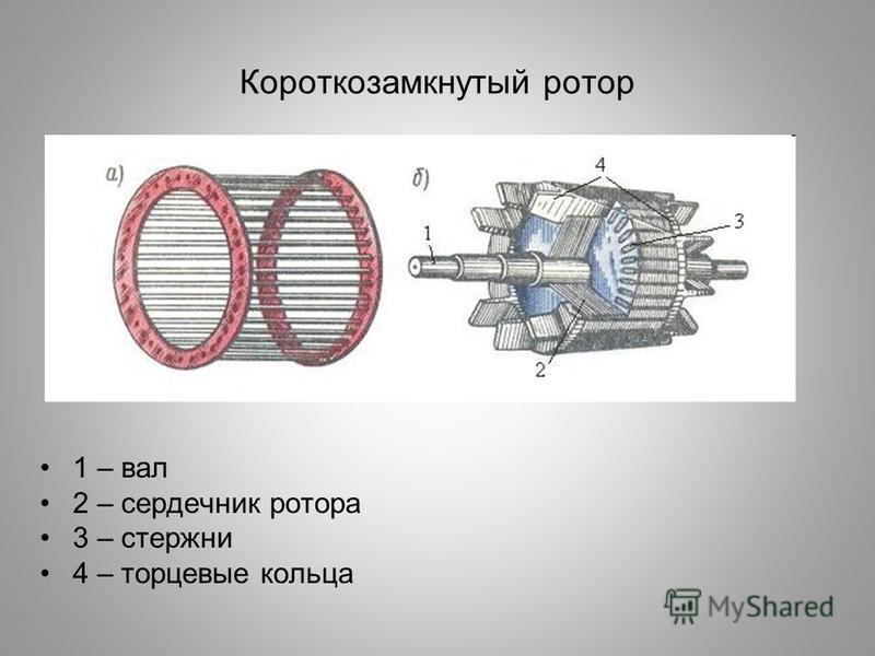 Короткозамкнутый ротор 1 – вал 2 – сердечник ротора 3 – стержни 4 – торцевые кольца