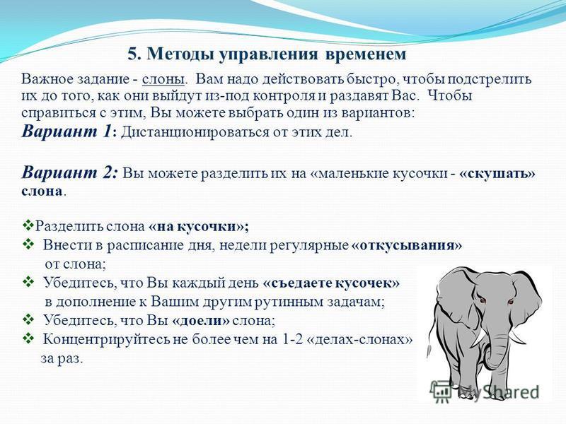 5. Методы управления временем Важное задание - слоны. Вам надо действовать быстро, чтобы подстрелить их до того, как они выйдут из-под контроля и раздавят Вас. Чтобы справиться с этим, Вы можете выбрать один из вариантов: Вариант 1 : Дистанционироват