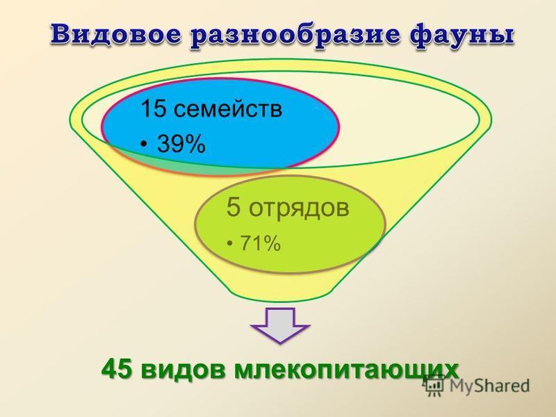 45 видов млекопитающих 5 отрядов 71% 15 семейств 39%