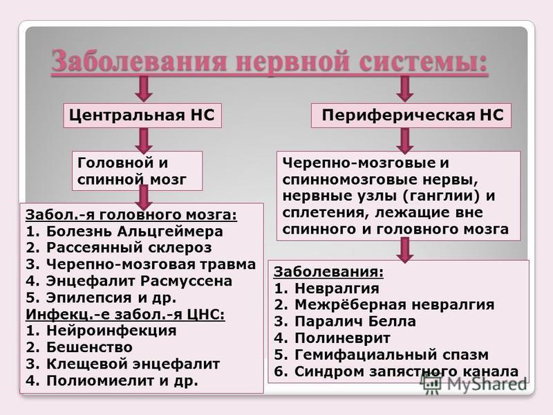 Заболевания нервной системы: Периферическая НСЦентральная НС Головной и спинной мозг Черепно-мозговые и спинномозговые нервы, нервные узлы (ганглии) и сплетения, лежащие вне спинного и головного мозга Заболевания: 1. Невралгия 2.Межрёберная невралгия
