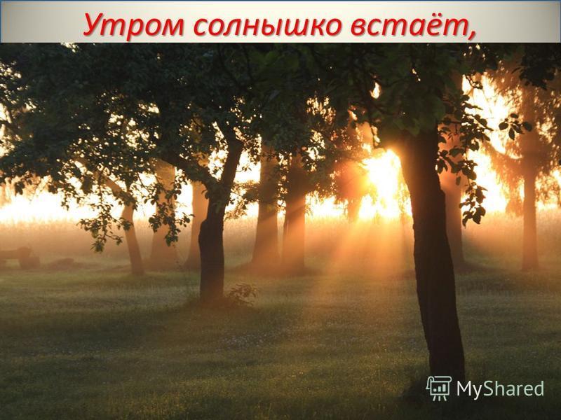 Утром солнышко встаёт,