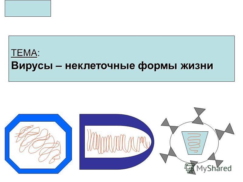 ТЕМА ТЕМА: Вирусы – неклеточные формы жизни