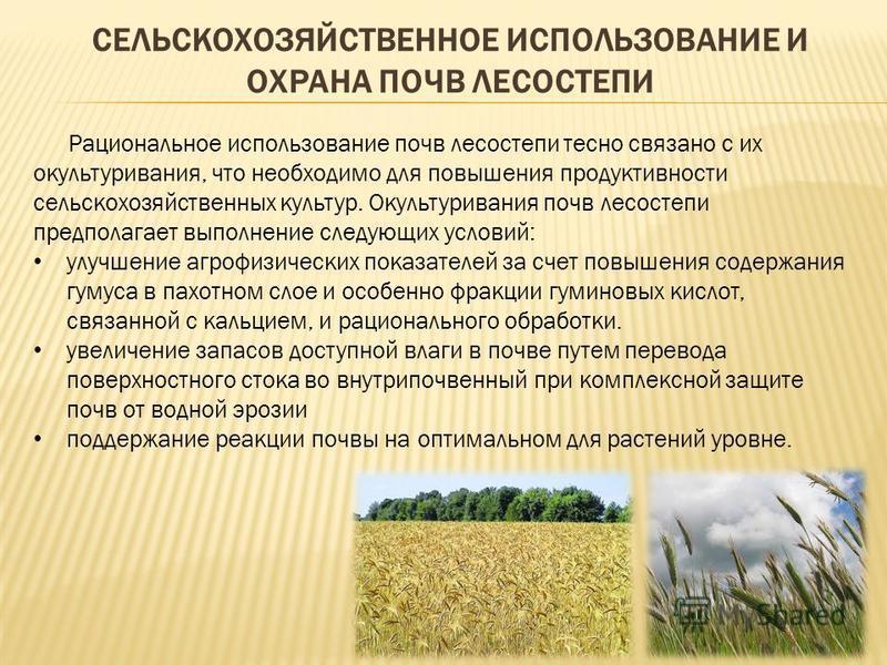 СЕЛЬСКОХОЗЯЙСТВЕННОЕ ИСПОЛЬЗОВАНИЕ И ОХРАНА ПОЧВ ЛЕСОСТЕПИ Рациональное использование почв лесостепи тесно связано с их окультуривания, что необходимо для повышения продуктивности сельскохозяйственных культур. Окультуривания почв лесостепи предполага