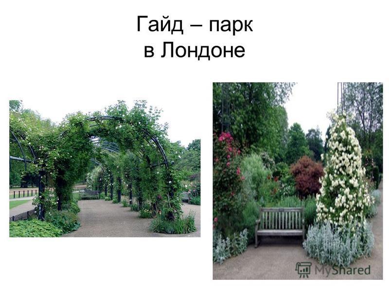 Гайд – парк в Лондоне