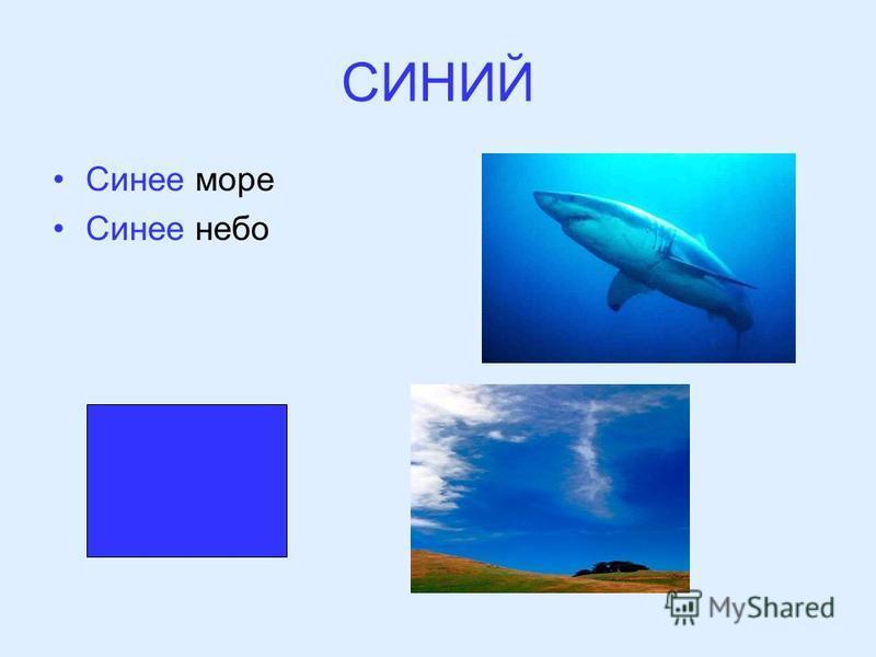 СИНИЙ Синее море Синее небо