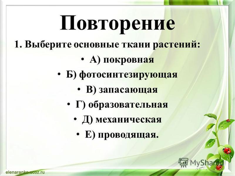 Повторение 1. Выберите основные ткани растений: А) покровная Б) фотосинтезирующая В) запасающая Г) образовательная Д) механическая Е) проводящая.