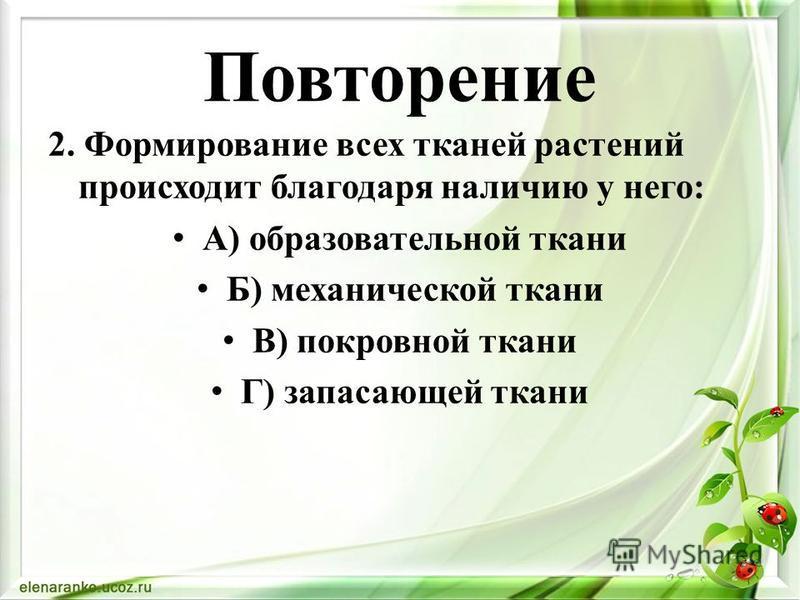 2. Формирование всех тканей растений происходит благодаря наличию у него: А) образовательной ткани Б) механической ткани В) покровной ткани Г) запасающей ткани Повторение