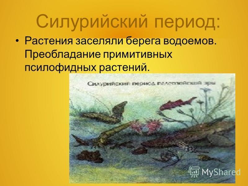 Силурийский период: Растения заселяли берега водоемов. Преобладание примитивных псилофидных растений.
