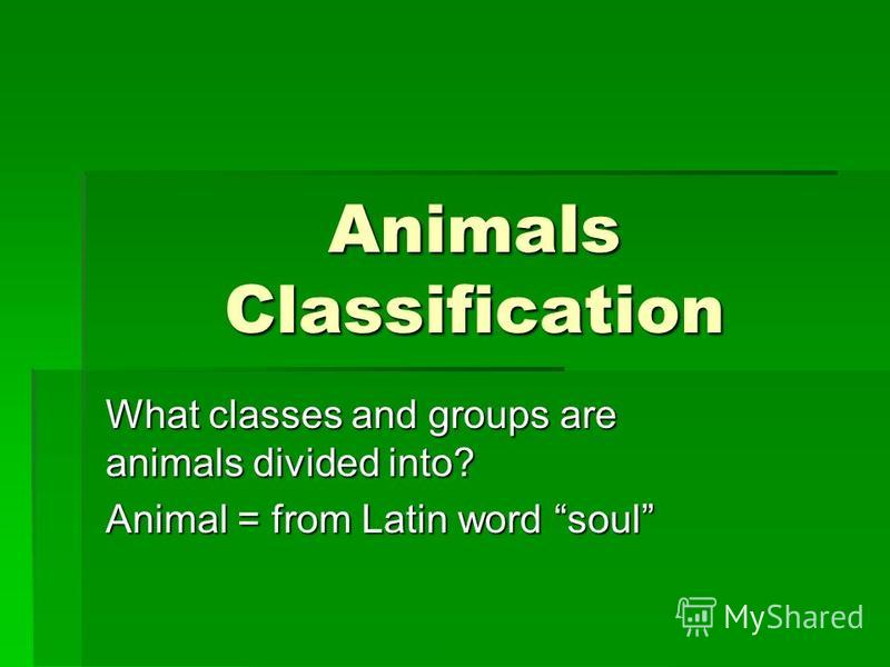 Animals Classification What classes and groups are animals divided into? Animal = from Latin word soul